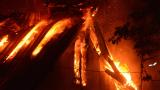 "БЛИЦ TV: Вижте как овладяха огнения ад в ""Княжево"""