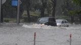 Десетки села без ток: Ураган и градушка помляха Асеновградско!