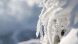 Бременна в осмия месец остана без дом заради снега