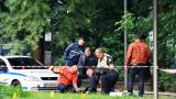 "Нови разкрития: Дуелът в Ботевград с пистолети ""Валтер"", ""Макаров"" и ТТ, сводникът надупчил Пелов в главата и краката"