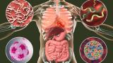 "Надвий ""тихия убиец"": Революционен метод срещу хипертония"