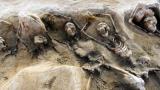 Археолози откриха масов гроб на роми