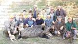 Авджии от Гърменско повалиха 245-килограмов звяр