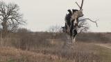Вековно природно богатство край Шумен умира СНИМКИ