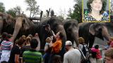 Зоопарк за галене в Швейцария